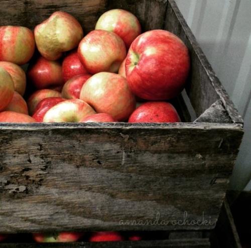 apples-2016-1